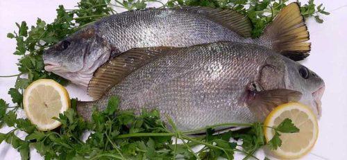 Comprar pescado online Mallorca