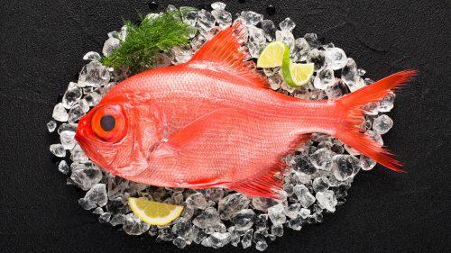 virrey pescado mallorca