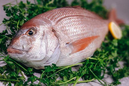comprar pescado mallorca